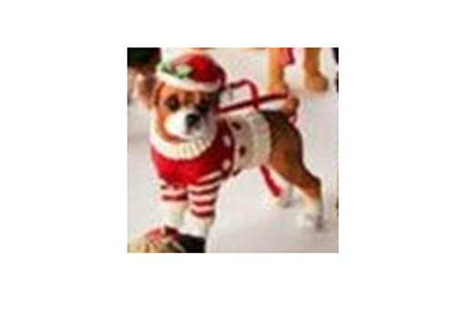 One Hundred 80 Degrees Dog Ornament with Coordinated Bag, Choice of Styles (Boxer)