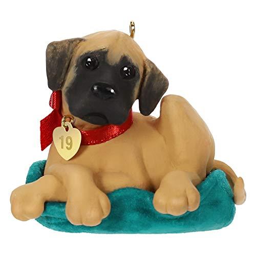 Hallmark Keepsake Keepsake Ornament, Dane Puppy Love