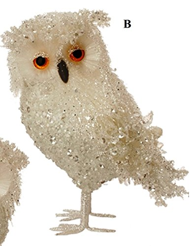 RAZ Enchanted Holiday Whimsy Iced Owl Ornament, Choice of Style (B)