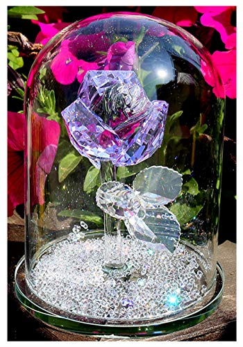 H&D Purple Crystal Enchanted Rose Flower Figurine Dreams Ornament in a Glass Dome with Gifts Box