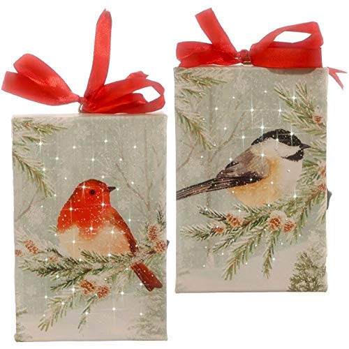 RAZ Imports 6″ Winter Forest RED Bird & Chickadee Bird Lighted Print Ornament Set