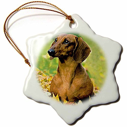 Angel Ornaments Dogs Dachshund – Smooth Dachshund – inch Snowflake Porcelain Ornament