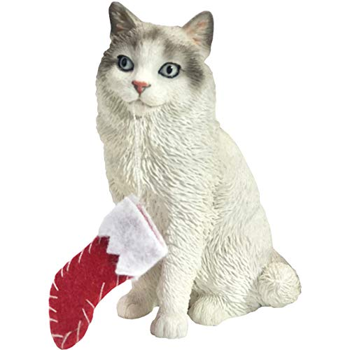 Sandicast Bicolor Ragdoll Cat with Stocking Christmas Ornament