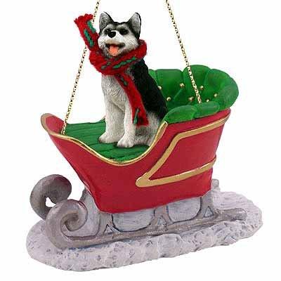 Conversation Concepts Siberian Husky Sleigh Ride Christmas Ornament Black-White Brown Eyes – Delightful!