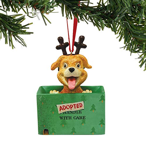 Department 56 Gary Patterson Adopted for Christmas Dog Hanging Ornament, 3.375″, Multicolor