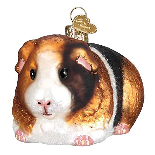 Old World Christmas Guinea Pig