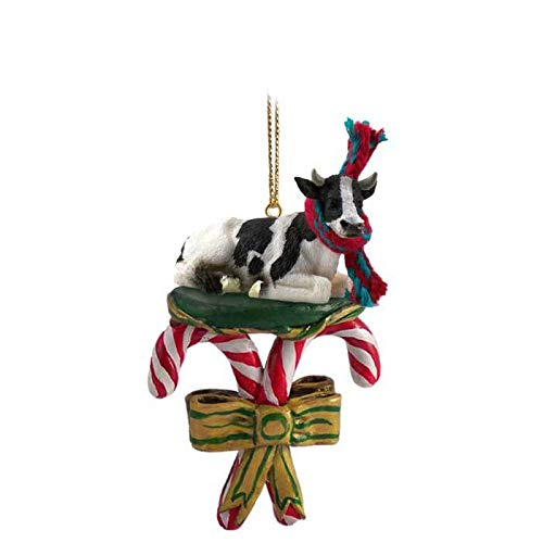 Conversation Concepts Holstein, Bull Candy Cane Ornament