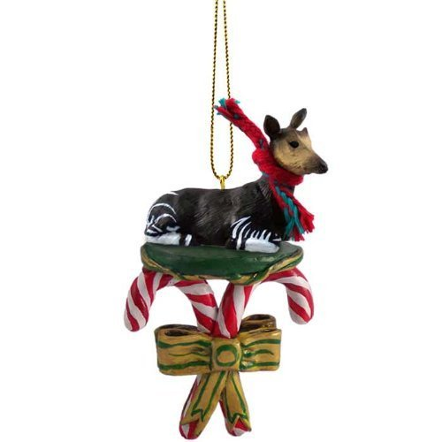 Okapi Candy Cane Ornament by Conversation Concepts
