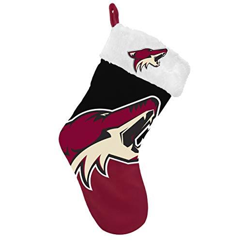 FOCO NHL Arizona Coyotes 2018 Basic Holiday Stocking, Team Color, One Size