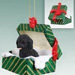 Conversation Concepts Cockapoo Black Gift Box Green Ornament