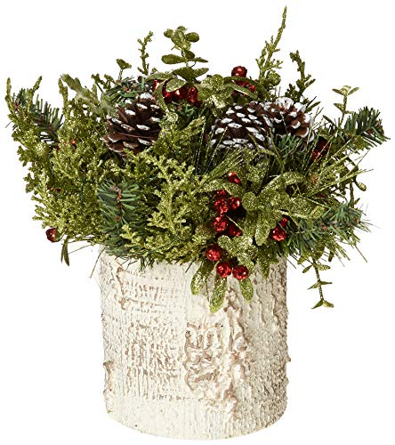 G Ganz Christmas – Light Up Mistletoe Birch Tree Container 9 inches
