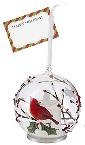 Ganz U.S.A., LLC Red Cardinals Snowy Branches LED Glass Bird Ornaments for Christmas Trees or Holiday Kitchen Decorations with Realistic Flame from LuxuryLite with Happy Card (Away)