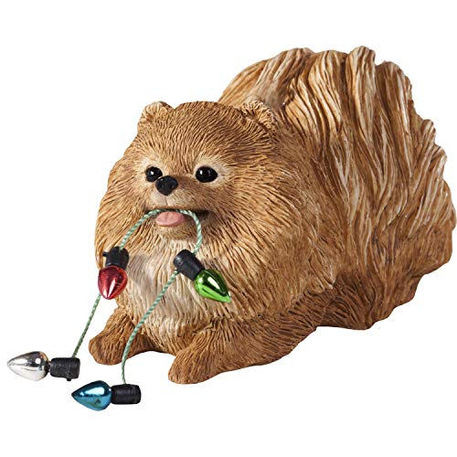 Sandicast Pomeranian Orange Holding Holiday Lights – Christmas Holiday Ornament (XSO12003)