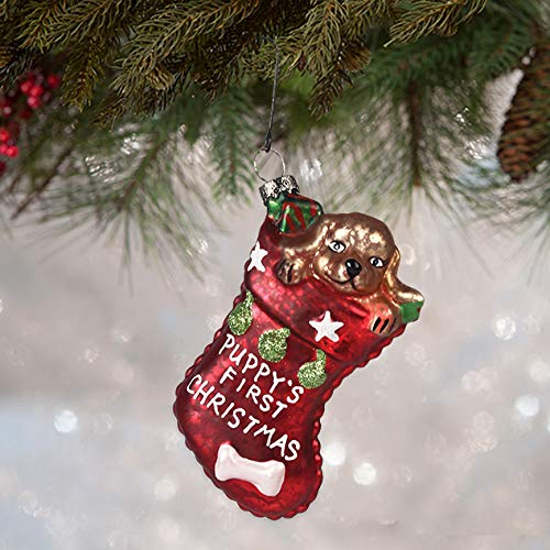 Bethany Lowe Designs Puppy's First Christmas Ornament