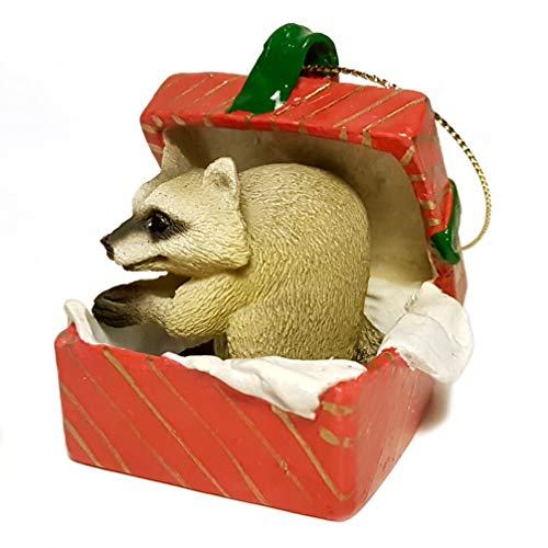 Conversation Concepts Raccoon Gift Box Red Ornament