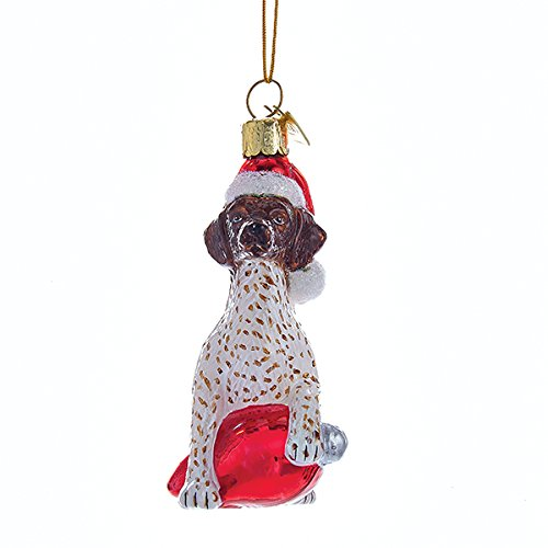 Kurt Adler Glass Noble Gems German Shorthair on Red C7 Bulb Christmas Ornament