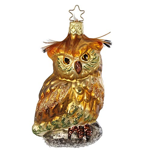 Inge-Glas Forest Owl 1-192-15 German Blown Glass Christmas Ornament Gift Box