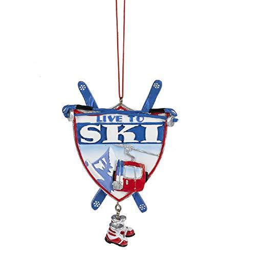 CBK Home Accents Ganz Live to Ski Ornament.