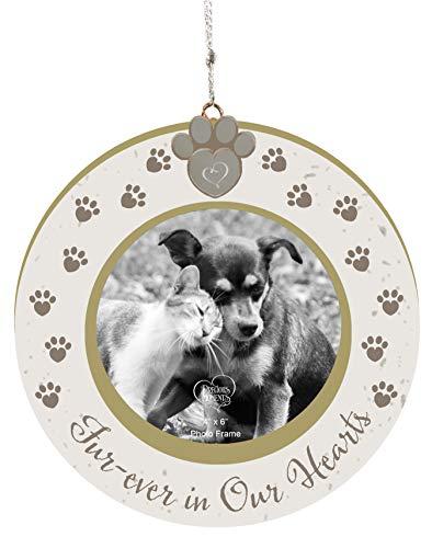Precious Moments Pet Memorial Photo 191488 Ornament, One Size, Multi